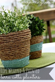 rope wrapped and painted terra cotta planters