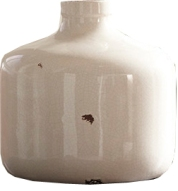 Birch-Lane-Farmer%E2%80%99s-Jug-Vase copy